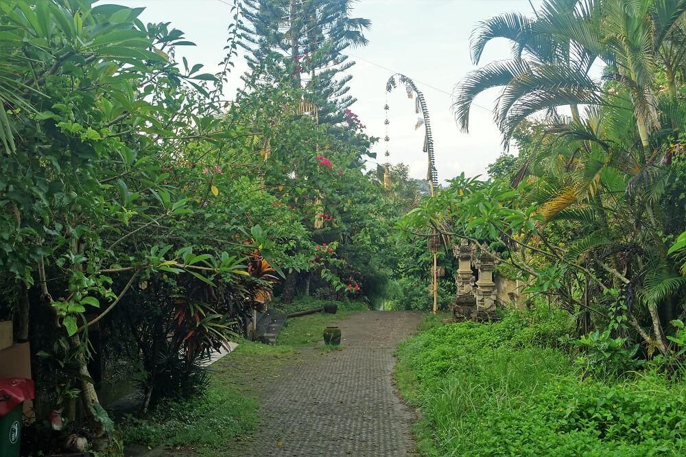 Scenery in Bali