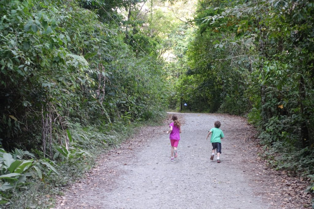 kids chasing a butterfly