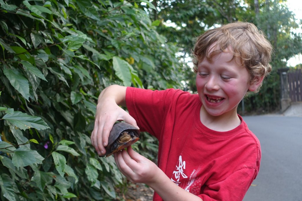 boy with a turtle