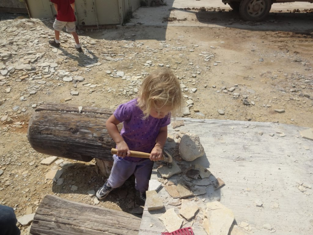 girl pounding fossil rocks with hammer