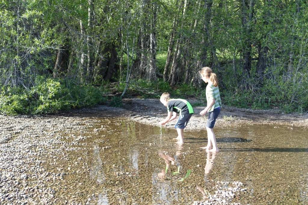 kids wading in water