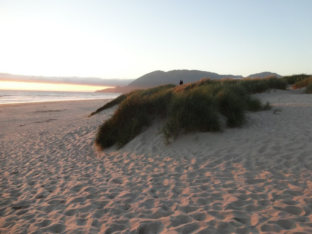 sandy beach at sunset
