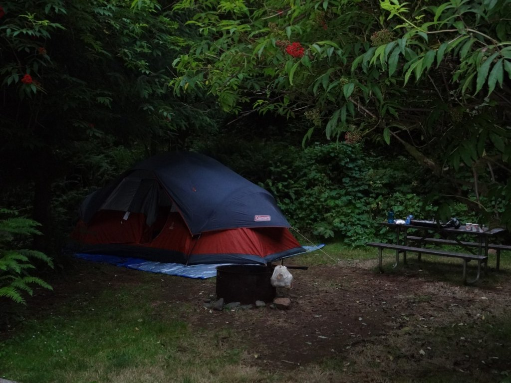 Tent camping at Jedediah Smith Redwoods State Park