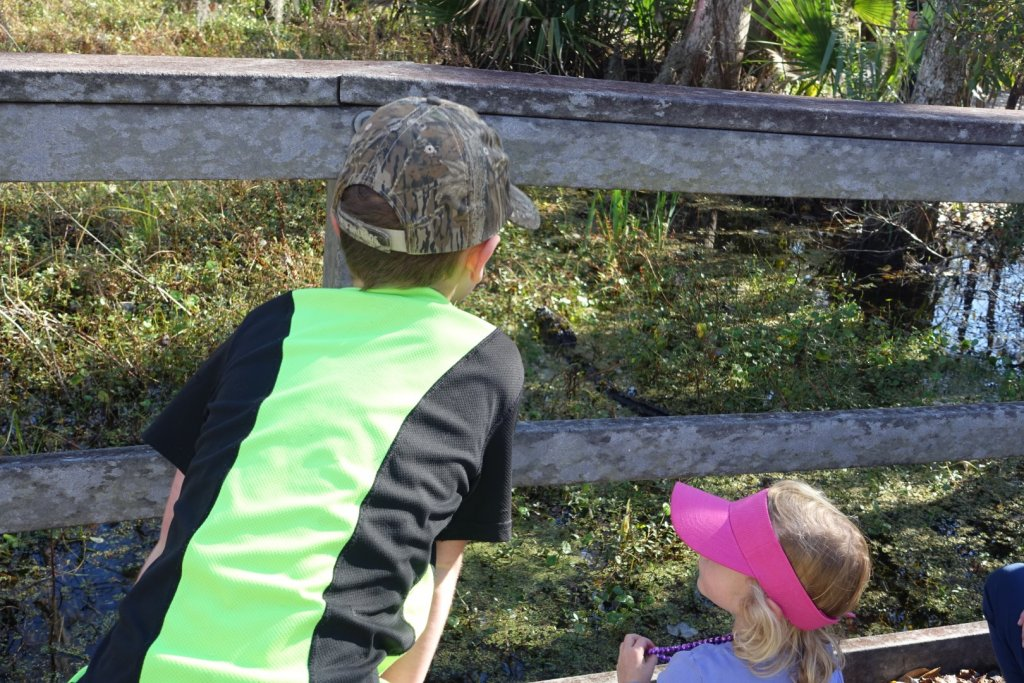 two kids looking at an alligator in the water