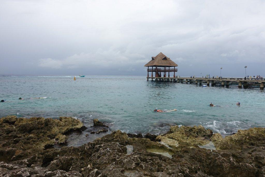 people snorkeling in the ocean