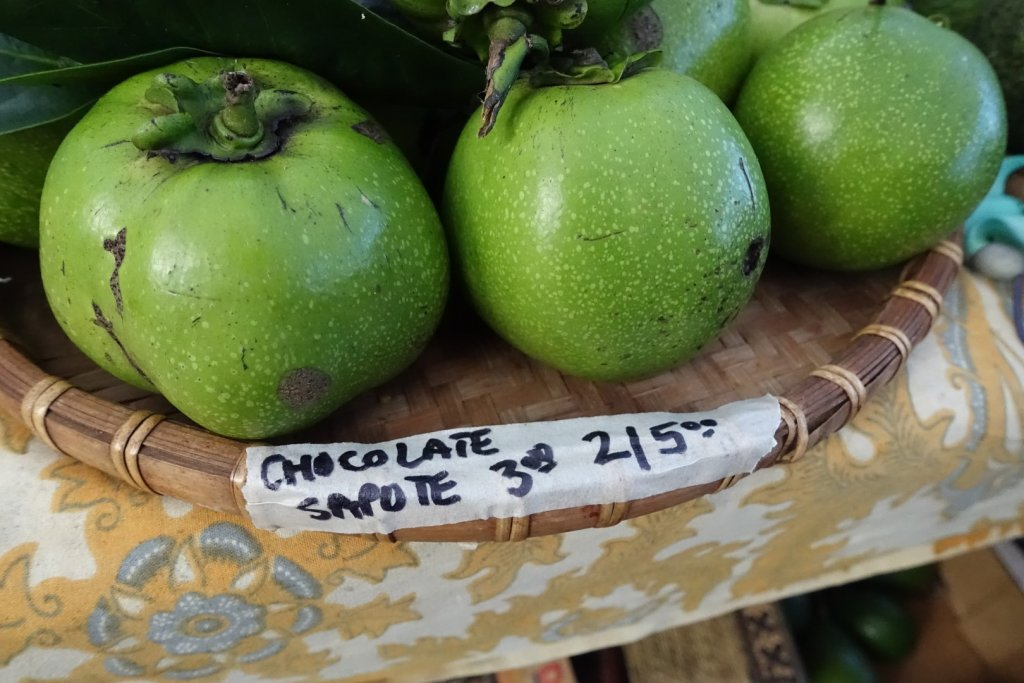 Chocolate sapote