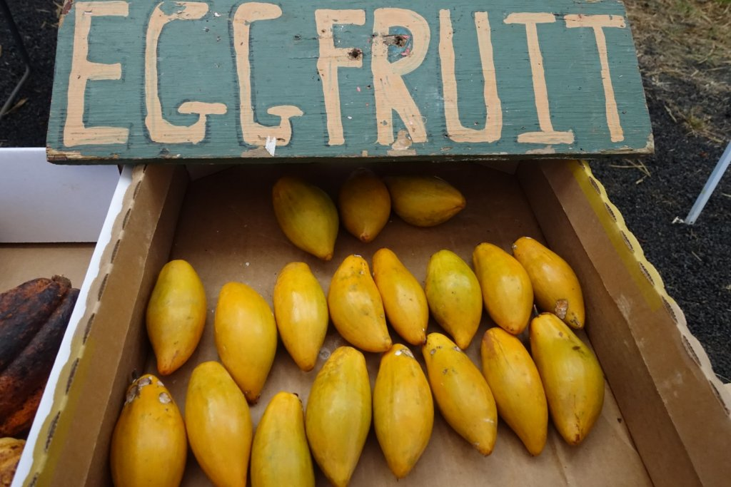 Egg fruit display