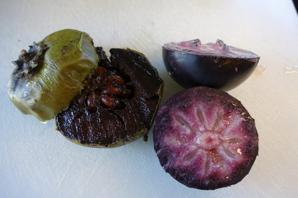 Inside of a cream apple and black sapote (chocolate fruit)