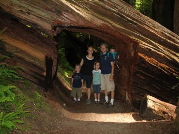 family standing inside a redwood tree