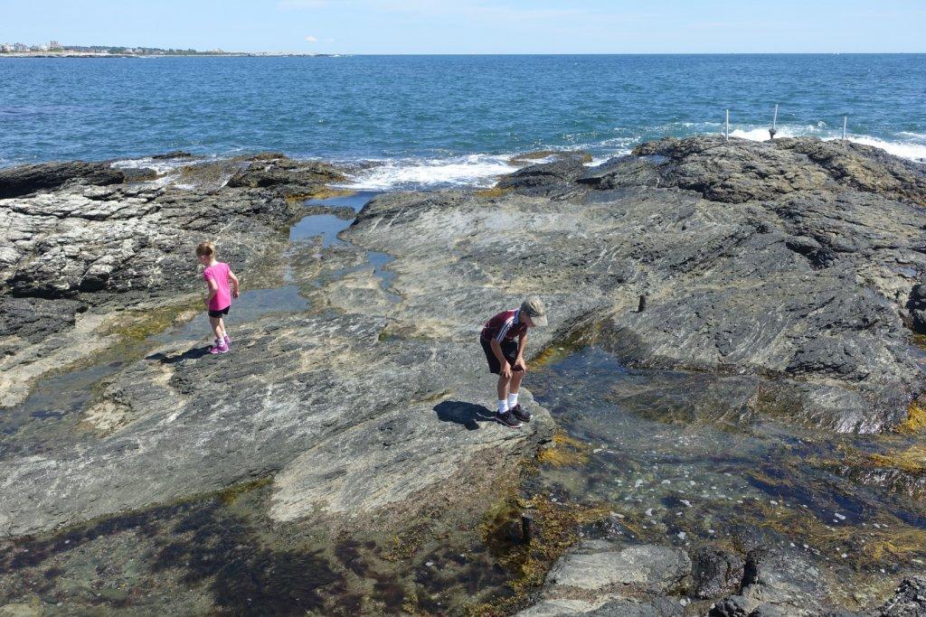 kids looking in tidepools at the ocean