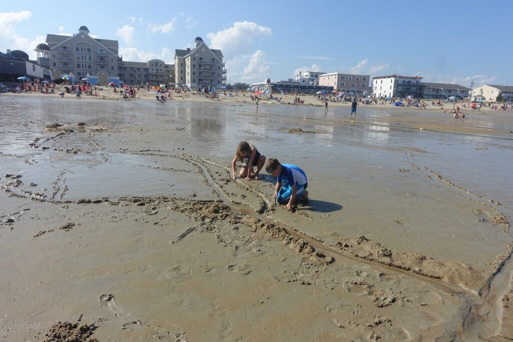 kids digging in the sand