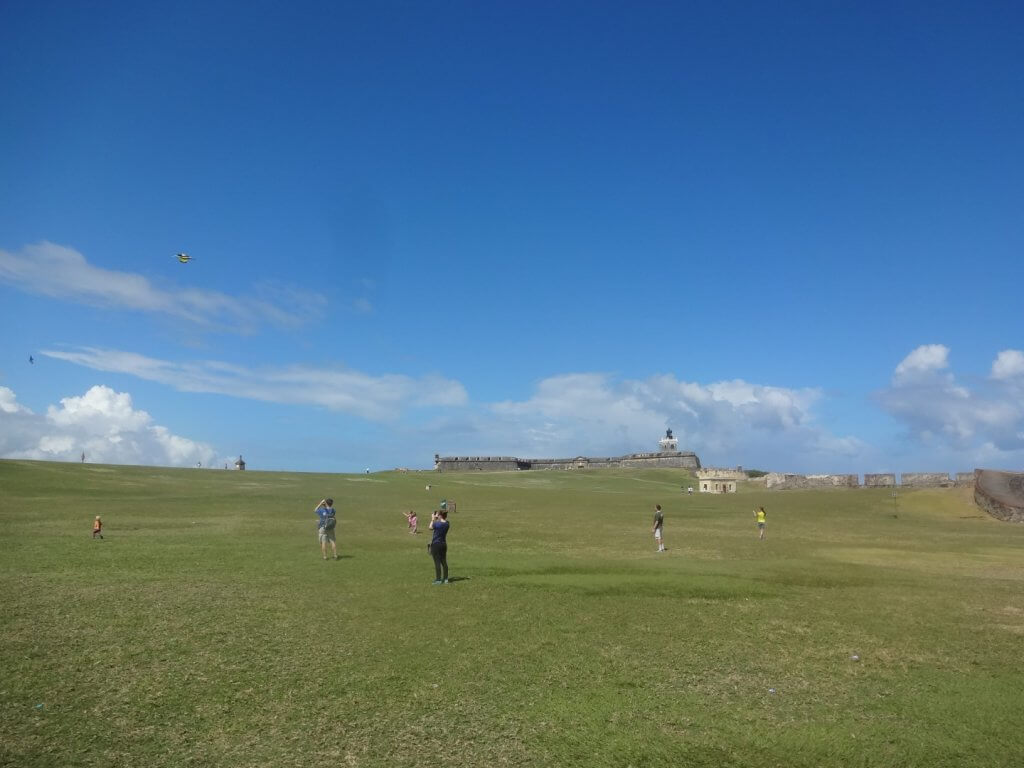 people flying kites in a grassy field