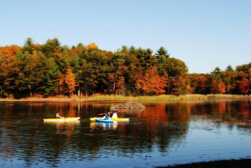 kayaks on a lake with Fall Leaves