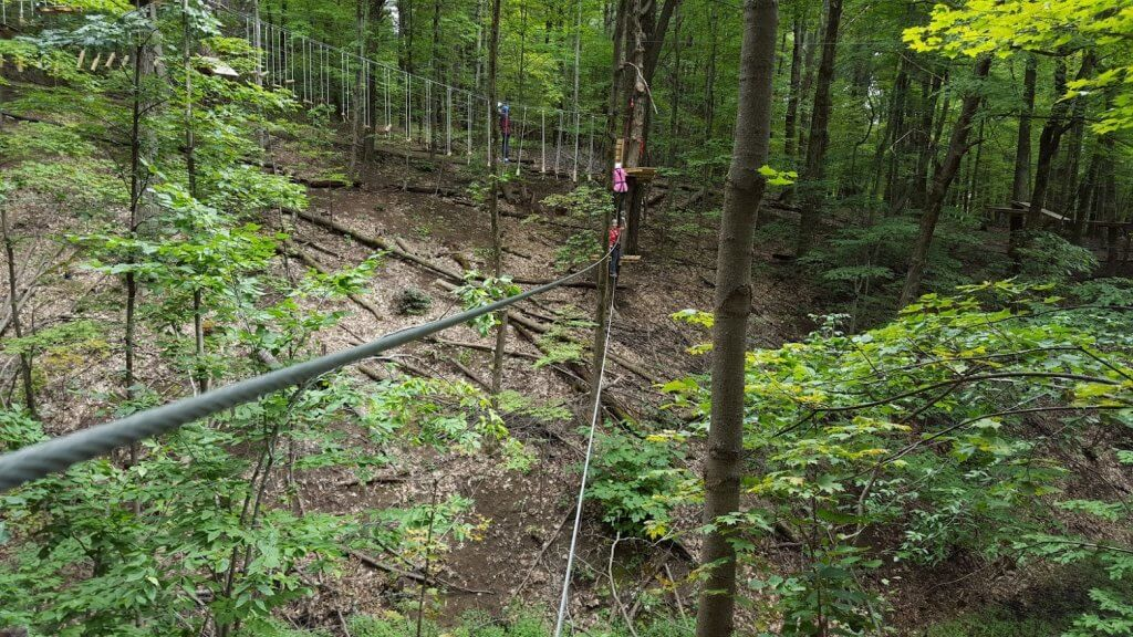 ropes course in the trees