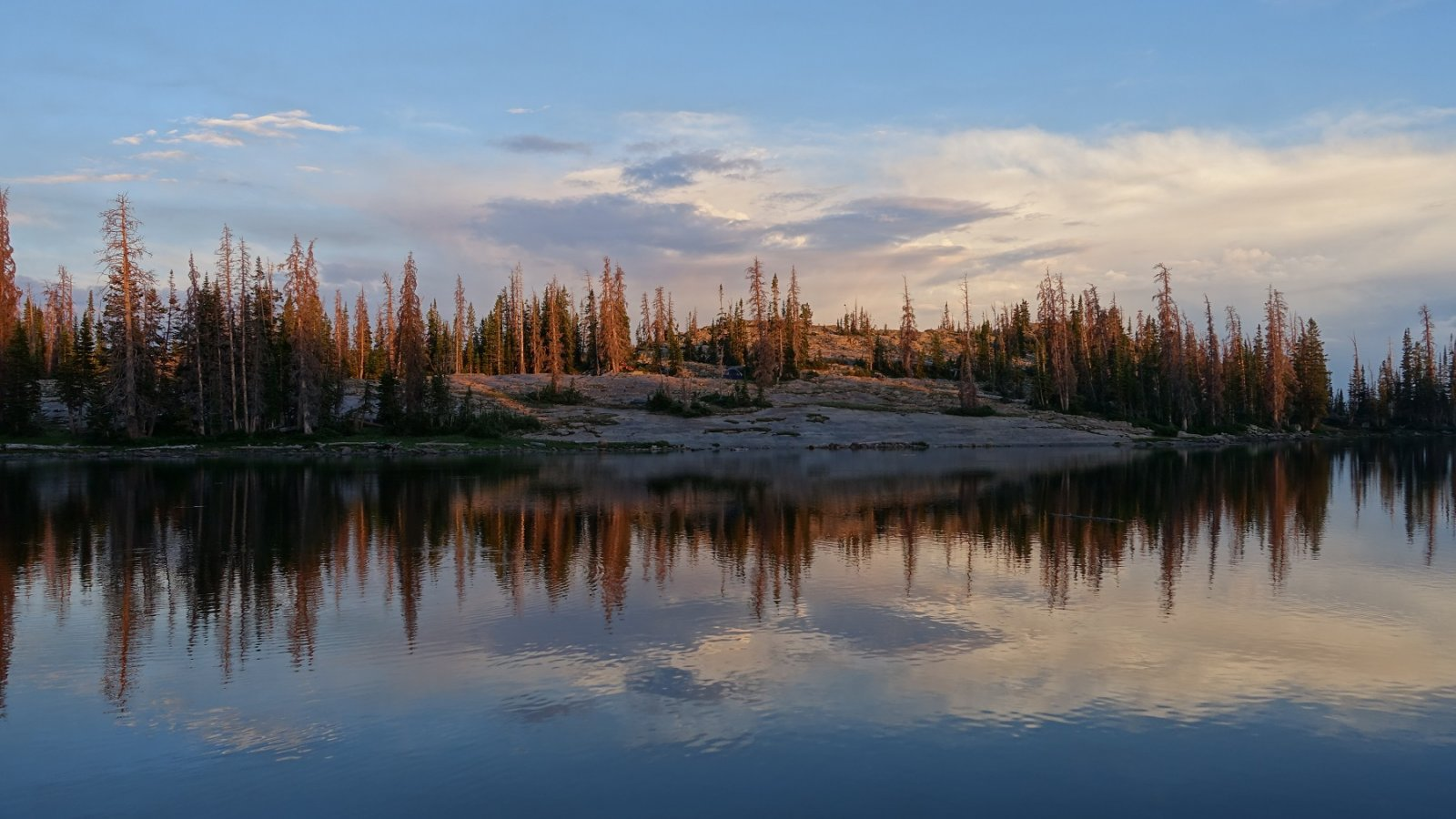 lake at sunset with pine trees