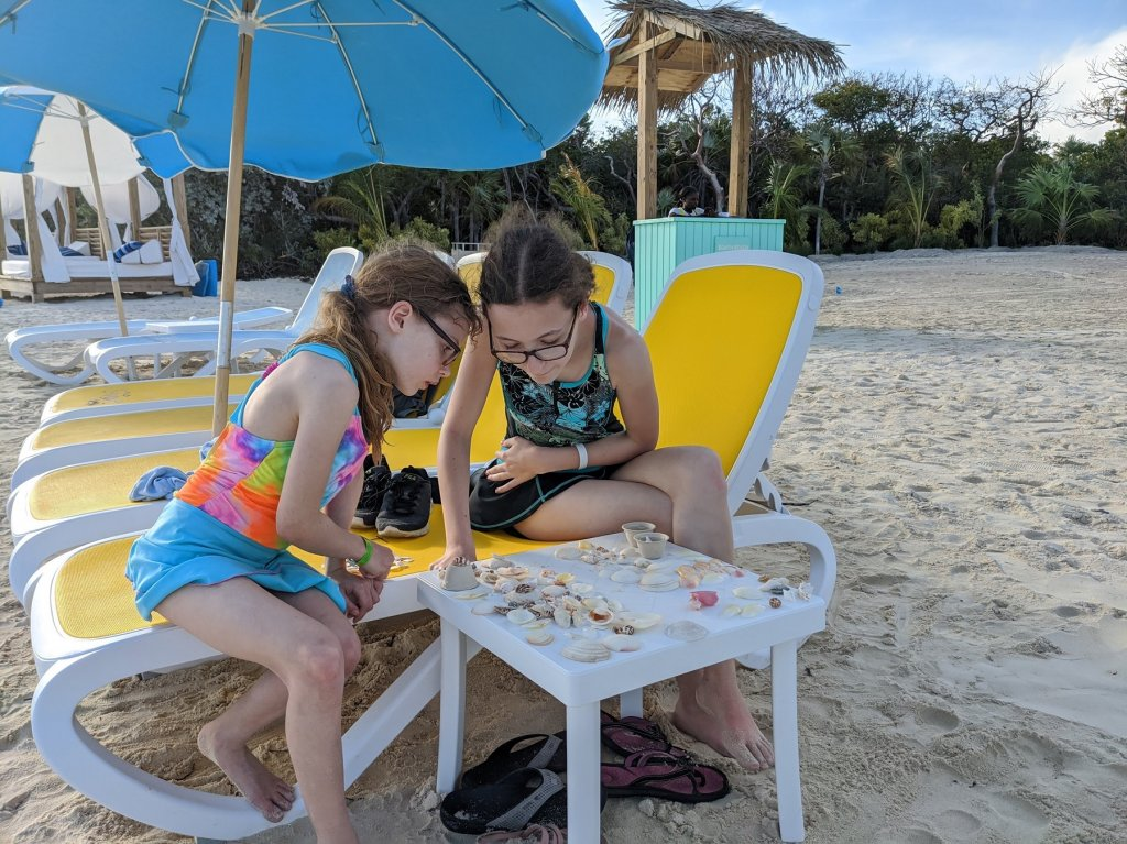 girls looking at shells