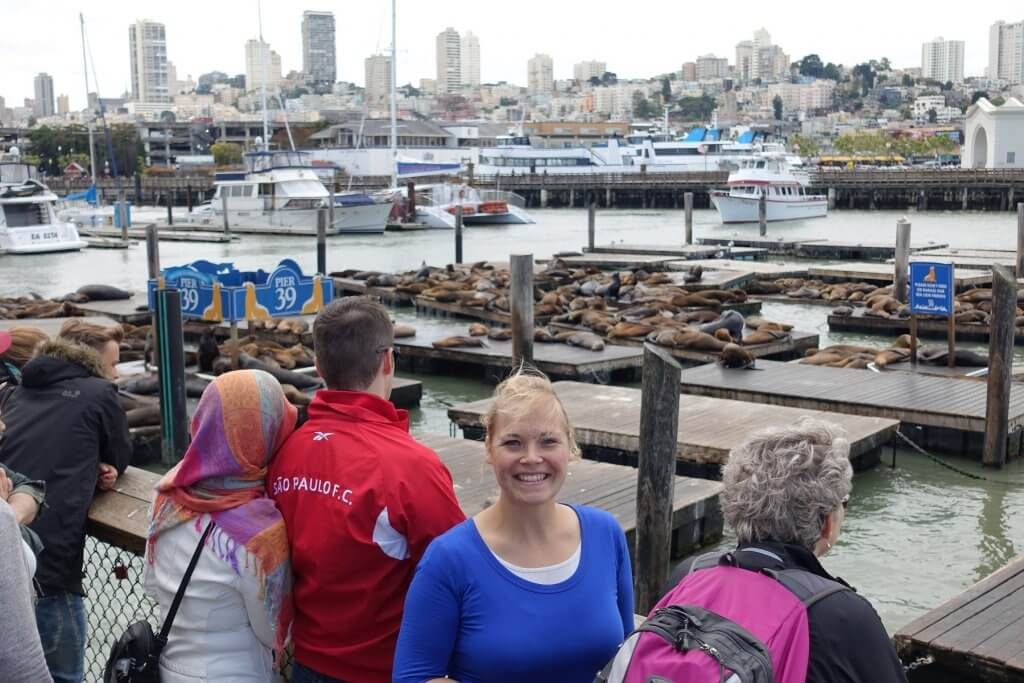 people in front of pier with seals