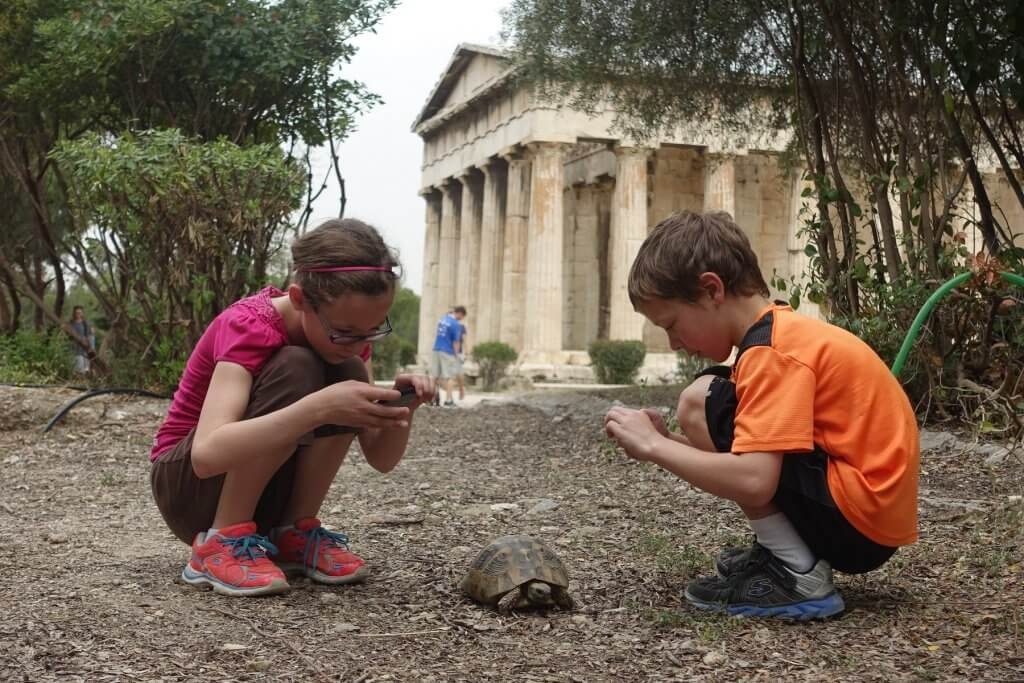 two kids taking picture of a turtle
