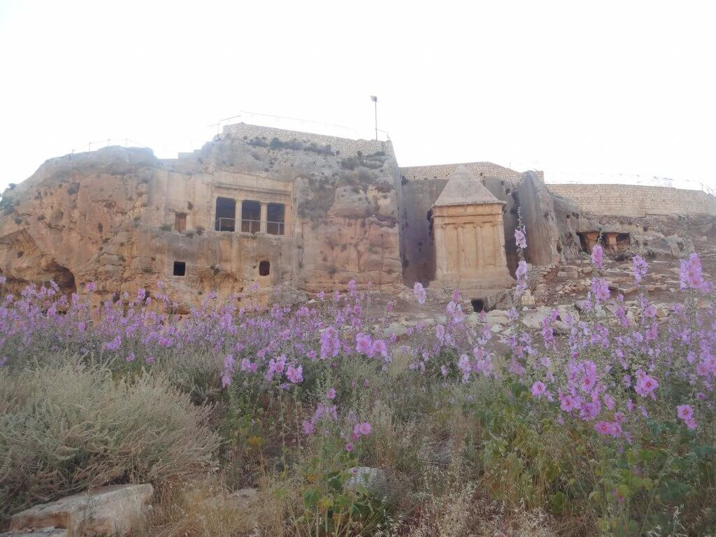 ancient monuments with purple flowers